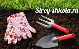 Как сажать газонную траву: Технология посадки, уход за газоном