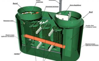Бактерии для септиков: принципы бактериологической очистки и анализ рыночного предложения