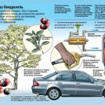 Биотопливо своими руками