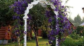 Украшаем дачный участок —садовыми арками сделанными своими руками