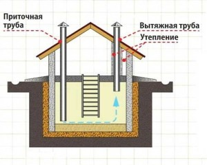 Процесс вентиляции погреба