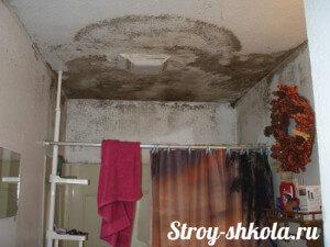 Образец плесени в ванной комнате