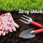 Как сажать газонную траву