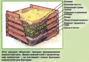 Принцип формирования компостной кучи