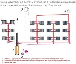 Схема двухтрубной системы отопления с насосной циркуляцией воды с нижней разводкой подающего трубопровода