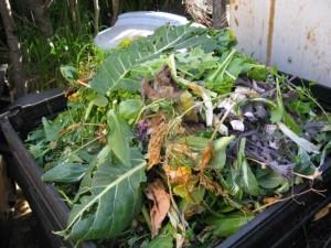Трава которая входит в компост
