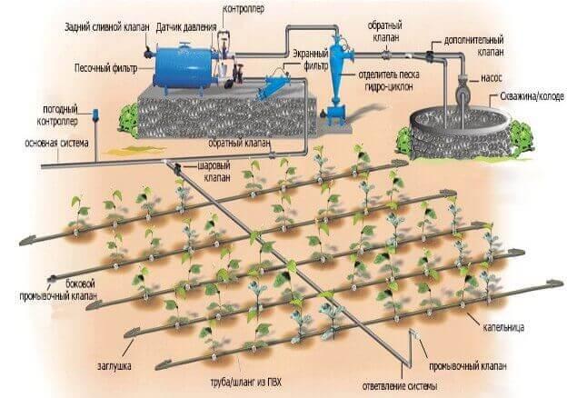 Система для поливки огорода