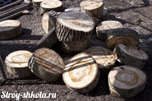 Напиленный ствол дерева для садовой дорожки