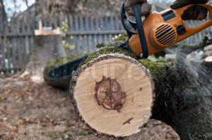 Нарезаем деревянные спилы с помощью бензопилы