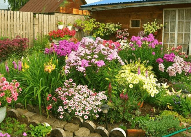 Пример цветочного оформления сада.