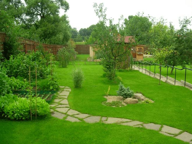 Партерный газон украсит любой ландшафт.