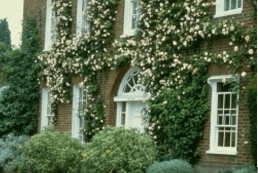 Фасад дома с вертикальным озеленением