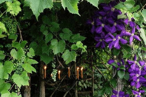 Уютный зеленый уголок