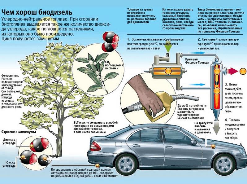 Как получит биотопливо в домашних условиях